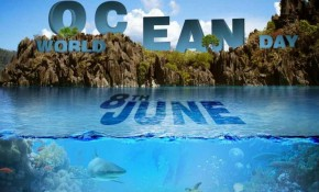 World Oceans Day in Antibes: the bluewater beach clean-up!