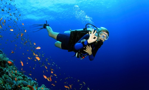 Scuba Diving training courses